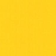 Tracciatura linee campo Colore Giallo Ral 1021