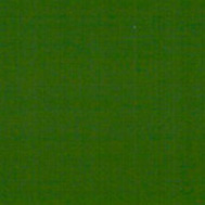 RAL 6002 VERDE LEAF GREEN