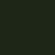 RAL 6015 OLIVA NERASTRO