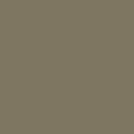 RAL 7002 GRIGIO OLIVASTRO