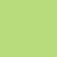 SWIMMING PAINT VERDE SOLE PANTONE 365U