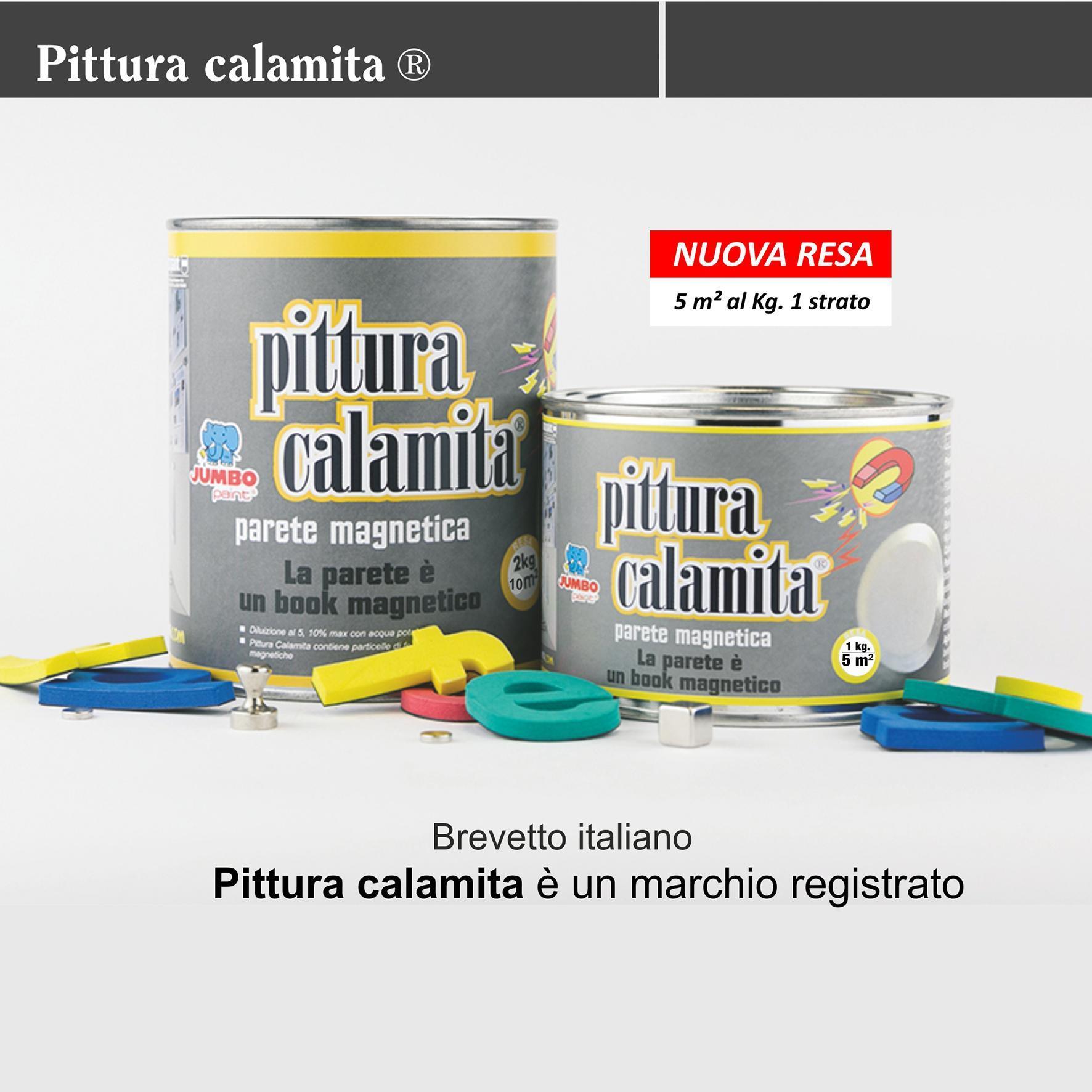 Vernice Lavagna Magnetica Colorata pittura calamita ®